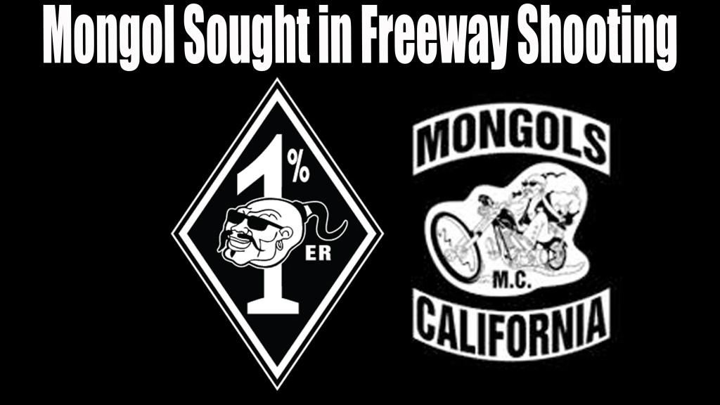 Mongol Sought in Freeway Shooting
