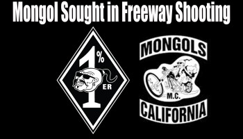 Mongol Sought in Freeway Shooting